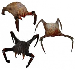 HeadcrabCollection.jpg