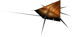 Monster cockroach.PNG